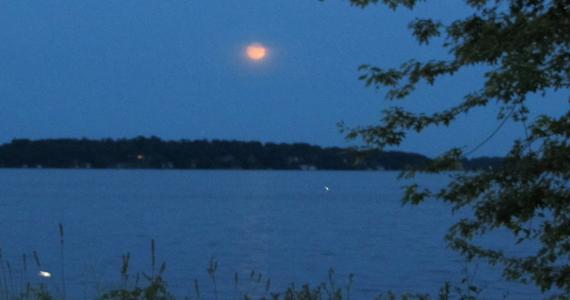 Moonlight & Fireflies in Wisconsin