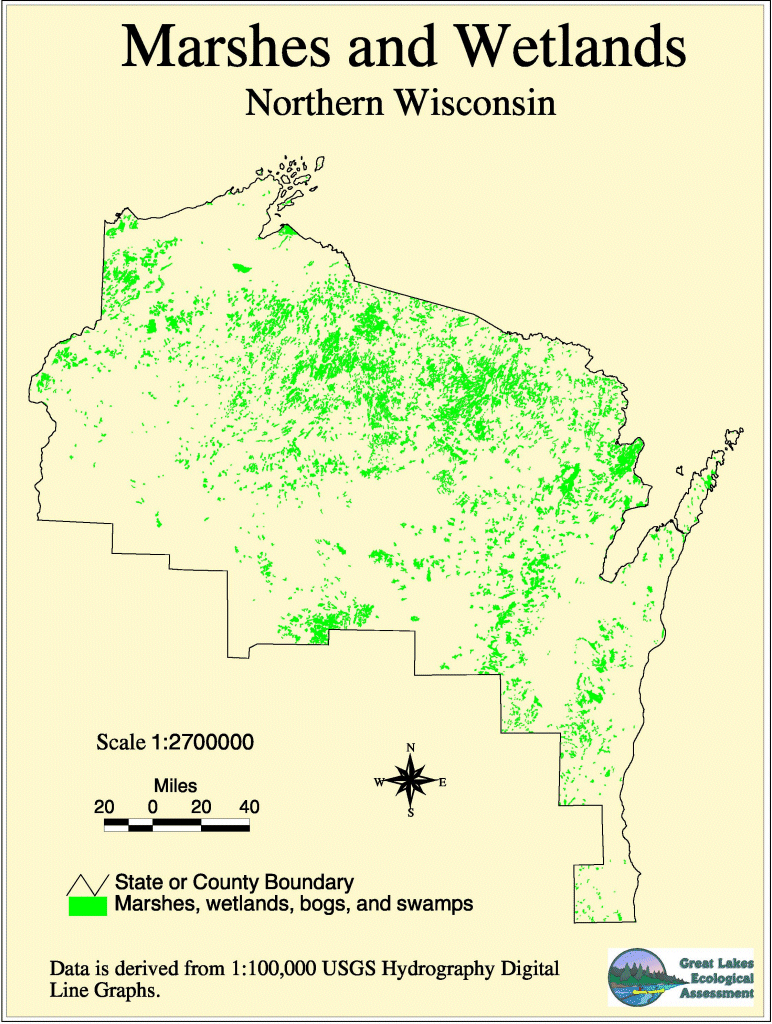 Northern Wisconsin Wetlands Northwoods WI