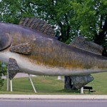 Willie The Walleye Welcomes You to Minnesota