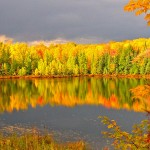 Northern Wisconsin Fall